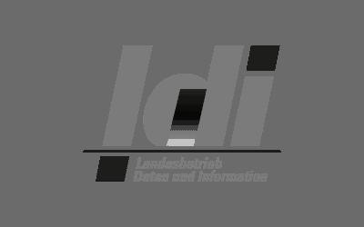 Landesbetrieb-Daten-und-Information-LDI